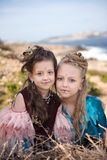 Portrait of two blonde girls and brunettes in fancy dresses of birds and with nests in hairstyles. Portrait of two girls blonde and brunet in fancy dresses of Royalty Free Stock Images