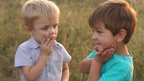 Portrait of two boys on background of dry grass. Two little children are playing in the suburban park at sunset. Portrait of two little boys on the background stock video footage
