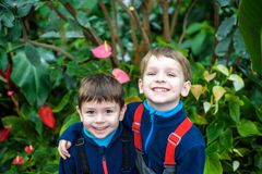 Portrait of two boys, siblings, brothers and best friends smiling. Friends hugging. Happy kids wearing warm closes in orangery park stock image