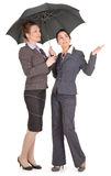 Portrait of two business women Stock Image