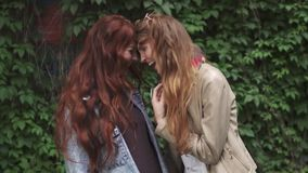 Portrait of two carefree red-haired girlfriends who laugh and hug. 20s. Two redheaded girlfriends goofing around and having fun. young girls with freckles stock video footage