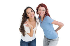 Portrait of two cheerful young female friends Stock Photography