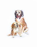 Portrait of two cute dogs, large and small, illustration of pain. Ts Royalty Free Stock Images