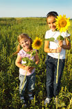 Portrait of two cute litle girls with sunflowers. Portrait of two cute litle girls hiding behind sunflowers on sunny day Royalty Free Stock Photo