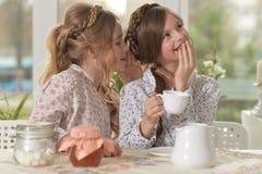 Little girls drinking tea. Portrait of two cute little girls drinking tea Stock Images