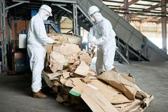 Workers in Hazmat Suits Sorting Cardboard at Modern Factory. Portrait of two factory workers wearing biohazard suits sorting reusable cardboard on recycling Stock Images
