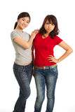 Portrait of two female friends Royalty Free Stock Photography