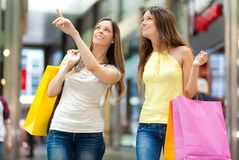 Portrait of two friends shopping together Stock Photography