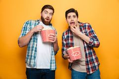 Portrait of a two frightened young men eating popcorn. While standing isolated over yellow background royalty free stock images