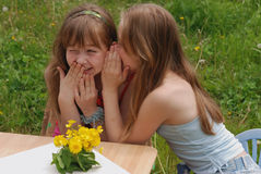 Portrait of two girls. Two girls talk about the secrets in the summer on a lawn royalty free stock photos
