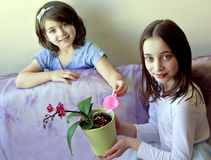 Portrait of two girls who watered potted orchid flower Royalty Free Stock Photo