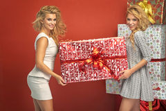 Portrait of two gorgeous blond women Stock Photography