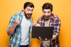 Portrait of a two happy young men looking at laptop. Computer while standing and celebrating isolated over yellow background royalty free stock images