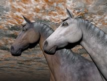 Portrait of two horses - 3D render. Portrait of two different horses quietly standing together in front of colorful cloudy sky Stock Images
