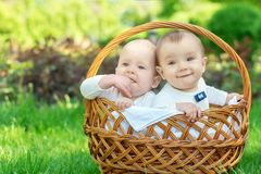 Portrait of two infant children in white suits sit in a basket on a picnic outdoor. Blond child is serious, boy with dark hair is stock photography