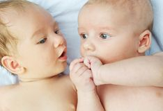 Portrait of a two little babies stock photography