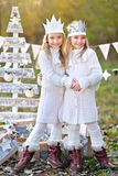 Portrait of two  little  girls Royalty Free Stock Photo