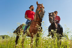 Portrait of two male equestrians on bay horses. In summer field Royalty Free Stock Photography
