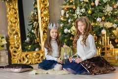 Portrait of two one young girls sisters close to white green Christmas tree. The girls in beautiful evening dresses clothes in New. Year awesome unique Stock Images