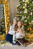 Portrait of two one young girls sisters close to white green Christmas tree. The girls in beautiful evening dresses clothes in New. Year awesome unique Royalty Free Stock Images