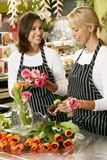 Portrait Of Two Sales Assistants In Florists Shop Royalty Free Stock Photography