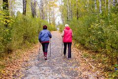 Senior ladies nordic walking. A portrait of two senior women nordic walking in a park royalty free stock photo