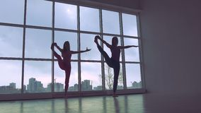 Portrait of two slender women practicing yoga synchronously stock footage