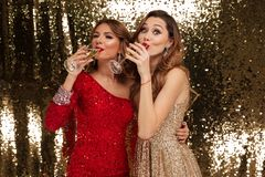 Portrait of two smiling attractive girls in shiny dresses. Drinking champagne from glasses while standing and celebrating isolated over golden shiny background Stock Photos