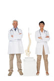 Portrait of two smiling doctors with skeleton model Stock Image