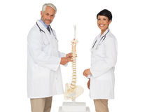 Portrait of two smiling doctors with skeleton model Stock Photos