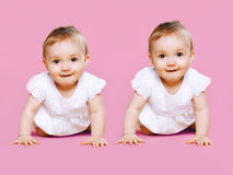 Portrait of two sweet twins baby crawls. Together Stock Photography