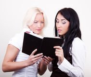 Portrait of two thoughtful businesswomen in office. Portrait of two  young pensive businesswomen in office, blonde and brunette Stock Image