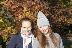 Portrait of two women near autumn wood. Two sisters stand near autumn wood Stock Photo