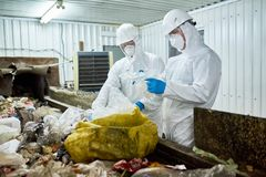 Workers sorting trash on conveyor belt. Portrait of two workers wearing biohazard suits sorting recyclable plastic and cardboard on conveyor belt at waste Stock Photography