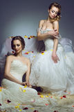Portrait of two young beautiful European brides in exclusive wedding gowns. Stock Photos