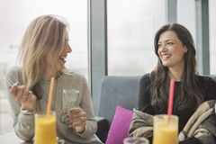 Portrait of two young beautiful women at coffee shop, girl talk. Two female friends enjoying together in a restaurant laughing, talking and gossiping Royalty Free Stock Photography
