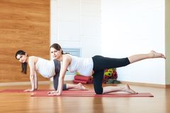 Portrait of two young pregnant fitness model in sportswear doing yoga or pilates training, Cow Pose, Bitilasana, asana for flexibl stock photos