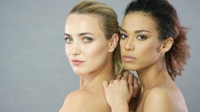 Two charming young women posing in studio. Portrait of two young pretty blonde and ethnic curly women looking at camera and posing together stock video footage