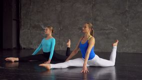 Portrait of two young women practicing yoga exercises together in well-lit yoga studio. gymnastics. Portrait of two young women practicing yoga exercises stock video