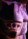 Portrait of a Tyrannosaurus in the dark at the exhibition City of Dinosaurs. MOSCOW, RUSSIA - JAN 5, 2015: Portrait of a Tyrannosaurus in the dark at the Stock Photo