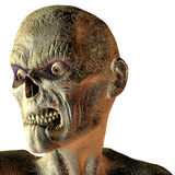 Portrait of an undead. Rendering 3D portrait of a undead Royalty Free Stock Image