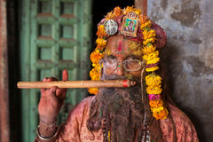 Portrait of an unidentified Sadhu man during Holi celebration in Nandgaon, Uttar Pradesh, India. Royalty Free Stock Image