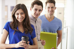 Portrait Of University Students On Further Education Course royalty free stock photos
