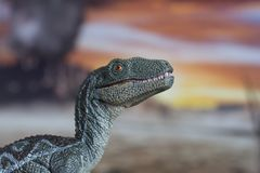 Portrait of a velociraptor in a jurassic world. Ready to attack another dinosaur Royalty Free Stock Photography