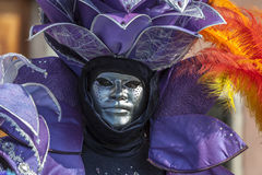 Portrait of a Venetian Mask Royalty Free Stock Images