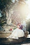 Portrait vertical des nouveaux mariés avec du charme tenant des mains et s'asseyant sur la vieille fontaine pendant le coucher du Photo stock