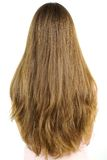 Portrait of very long blonde hair with layers Royalty Free Stock Photography
