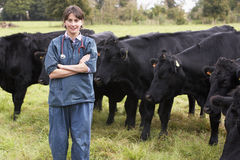 Portrait Of Vet In Field With Cattle. Looking at camera with cows around Stock Image