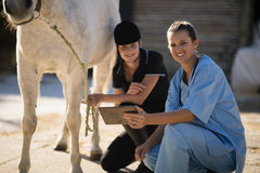 Portrait of vet with jockey crouching by horse Royalty Free Stock Photography
