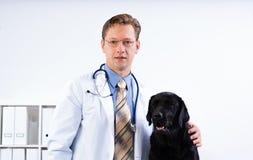 Portrait of a veterinarian. Near labrador dog Stock Photos